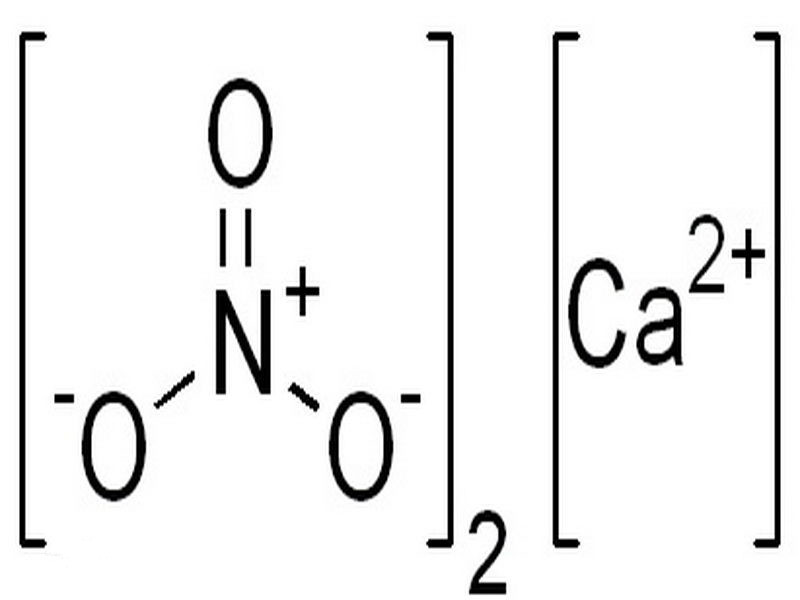 What is the Calcium nitrate?