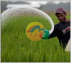 The current situation of China urea